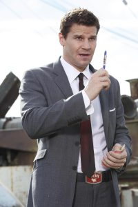 Special Agent Seeley Booth/David Boreanaz (Bones)